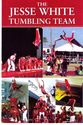 Click to Download The Jesse White Tumbling Team Flyer in PDF format